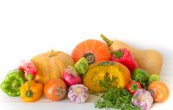 Grupo de vegetales variados do jardim orgânico Fotos de Stock Royalty Free