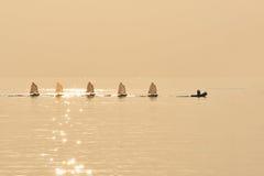 Grupo de velas del optimista remolcadas en el barco de goma de los BU del puerto Fotografía de archivo libre de regalías