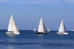 Grupo de veleiros na raça foto de stock