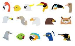 Grupo de vetores e de ícones dos pássaros Fotografia de Stock Royalty Free