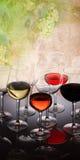 Grupo de vidros com vinho Foto de Stock Royalty Free