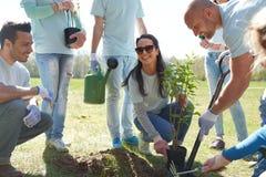 Grupo de voluntarios que plantan el árbol en parque foto de archivo