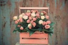 Grupo decorado das rosas das flores Imagens de Stock