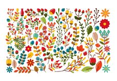 Grupo decorativo do outono de bagas e de galhos Imagem de Stock Royalty Free