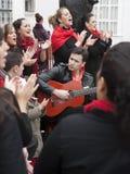 Grupo del flamenco Imagenes de archivo