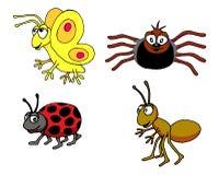 Grupo del insecto Fotografía de archivo
