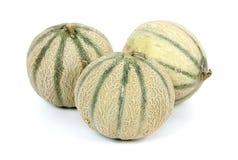 Grupo del melón del cantalupo Fotografía de archivo libre de regalías