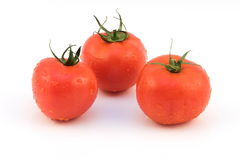 Grupo del tomate Foto de archivo libre de regalías