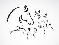 Grupo del vector de animales domésticos ilustración del vector