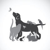 Grupo del vector de animales domésticos stock de ilustración