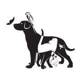 Grupo del vector de animales domésticos Imagen de archivo