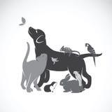 Grupo del vector de animales domésticos Fotografía de archivo