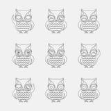 Grupo del vector de búhos Fotografía de archivo