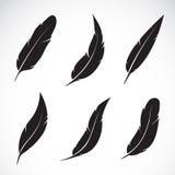 Grupo del vector de pluma