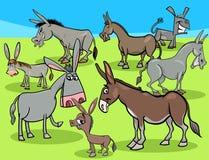 Grupo divertido de los animales del campo de la historieta de los burros stock de ilustración