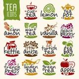 Grupo do ícone do chá do vetor Fotos de Stock Royalty Free