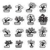 Grupo do ícone da árvore dos bonsais Vetor EPS 10 Imagens de Stock Royalty Free