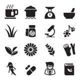 Grupo do ícone da erva Imagem de Stock