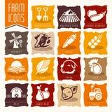 Grupo do ícone da exploração agrícola e do açougue Fotografia de Stock