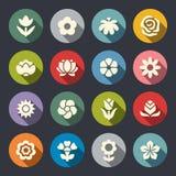 Grupo do ícone da flor ilustração do vetor