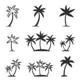 Grupo do ícone da palmeira Imagem de Stock