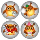 Grupo do ícone das corujas dos desenhos animados Foto de Stock