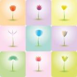 Grupo do ícone das flores, fundo da natureza Imagem de Stock Royalty Free