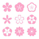 Grupo do ícone de Cherry Blossom ilustração do vetor