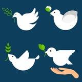 Grupo do ícone do vetor da pomba da paz Fotos de Stock