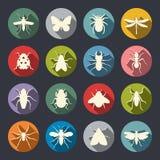Grupo do ícone dos insetos ilustração royalty free