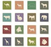 Grupo do ícone dos mamíferos ilustração stock
