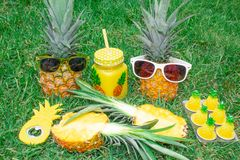 Grupo do abacaxi Dois abacaxis nos óculos de sol, um cortaram o abacaxi, o abridor de lata e as velas na forma dos abacaxis Grupo foto de stock royalty free