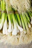 Grupo do alimento fresco dos vegetais crus do alho Imagem de Stock