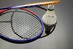 Grupo do badminton Fotografia de Stock Royalty Free