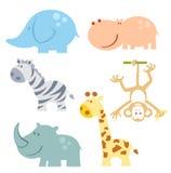 Grupo do ícone dos animais do jardim zoológico Imagem de Stock