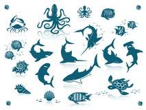 Grupo do ícone dos peixes do oceano Foto de Stock Royalty Free