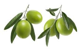 Grupo do dobro da azeitona verde isolado no fundo branco Foto de Stock Royalty Free