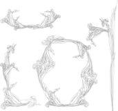Grupo do encabeçamento do ramalhete da flor. Coleção floral da decoração Fotografia de Stock Royalty Free
