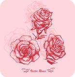 Grupo do esboço da flor Imagem de Stock