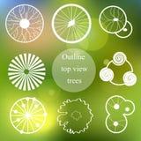 Grupo do esboço Opinião superior das árvores para o projeto da paisagem Imagem de Stock Royalty Free