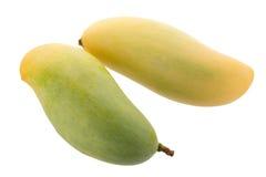 Grupo do fruto amarelo doce da manga isolado no fundo branco fotos de stock