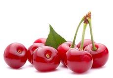 Grupo do fruto da cereja Imagens de Stock