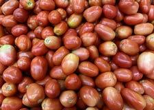 Grupo do fundo dos tomates Imagem da foto foto de stock royalty free
