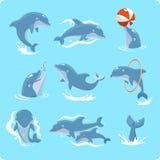 Grupo do golfinho Imagem de Stock Royalty Free