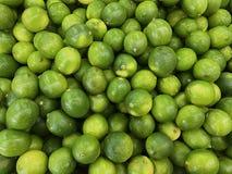 Grupo do limão orgânico Imagem da foto imagem de stock royalty free