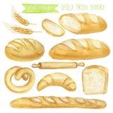 Grupo do pão da aquarela Ilustração desenhada mão ilustração royalty free