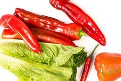 Grupo do pimentão, da pimenta e da alface vermelhos Foto de Stock