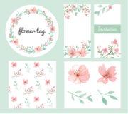 Grupo do projeto das flores e das folhas Imagens de Stock Royalty Free