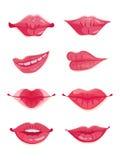 Grupo do projeto de oito bordos da fêmea do rosa quente Fotos de Stock