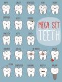 Grupo do tratamento dos dentes Coleção dental para o seu Foto de Stock Royalty Free